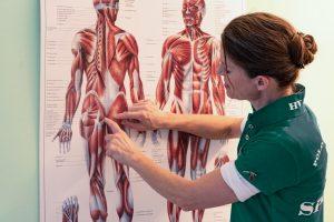 Heilpraktikerin erklärt Muskelströme